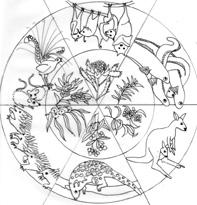 D'harawal Annual Seasons – Perpetual Calendar andposter